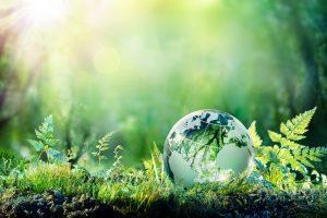 英語で環境の話をしよう!