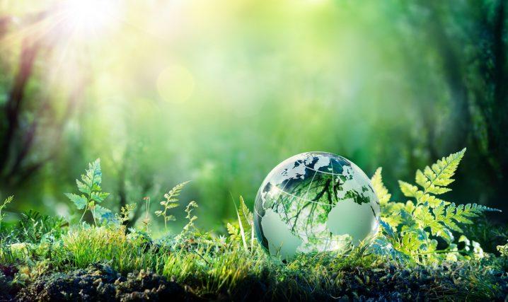 英語で環境の話をしよう!使える英単語・フレーズ10選 | Fruitful ...