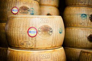 【海外文化を知ろう!イタリア食編】イタリアのグルメ紹介!白トリュフ、チーズ/本場のティラミスのレシピ