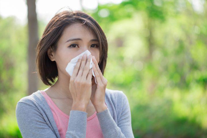 【3分で使える英語表現】花粉症の辛さを英語で愚痴りましょう!